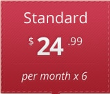Standard, $24.99 a month for 6 months